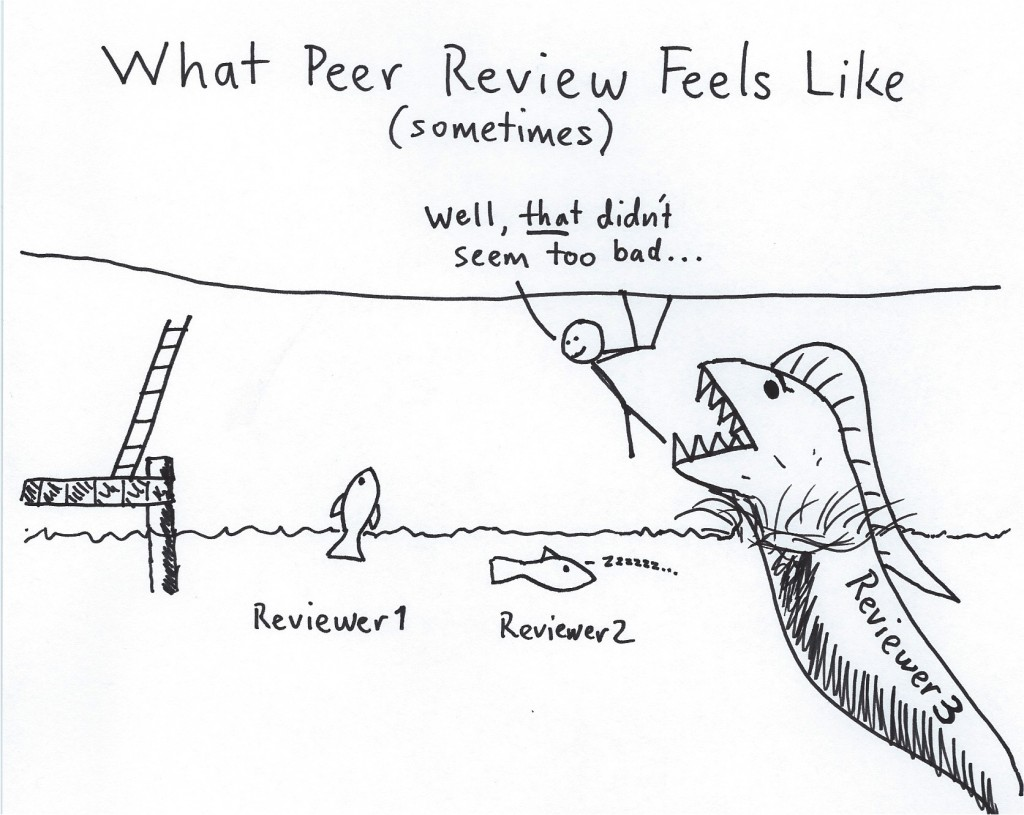 Reviewer3Attack